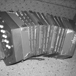 stagi concertina